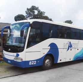 viazul Trinidad